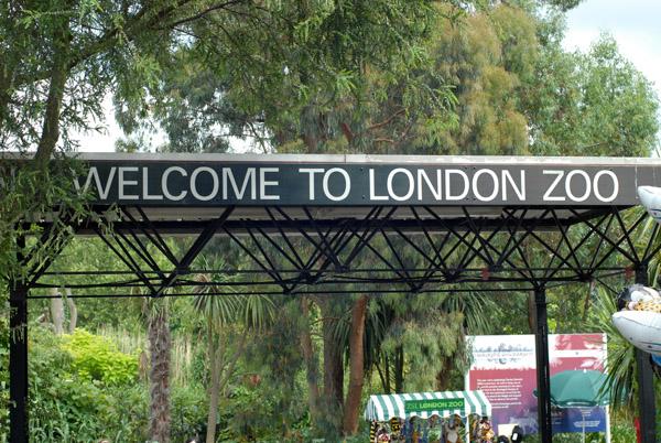 zoo-london