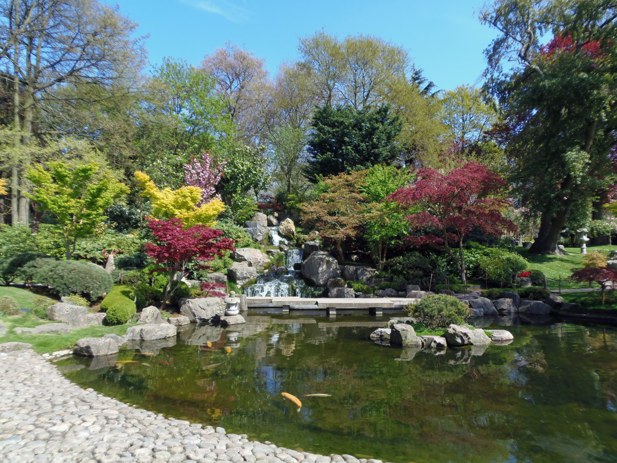 Kyoto Gardens: Holland Park, London